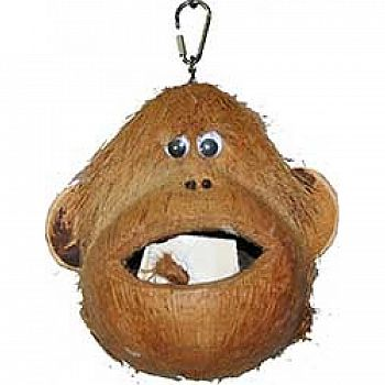 Java Wood Coco Monkey Bird Toy