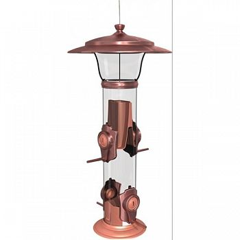 Radiant Finch Feeder (Case of 4)