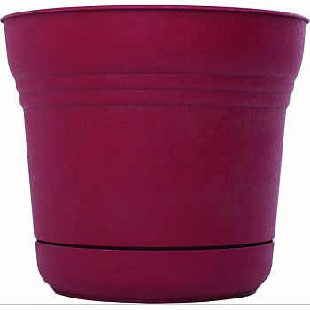 Saturn Planter RED 5 INCH (Case of 12)