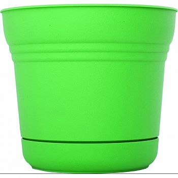 Saturn Planter GRE-FRESH 5 INCH (Case of 12)