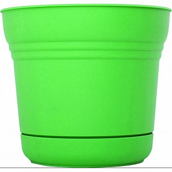 Saturn Planter GRE-FRESH 7 INCH (Case of 12)
