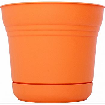 Saturn Planter TEQUILA SUNRISE 12 INCH (Case of 6)