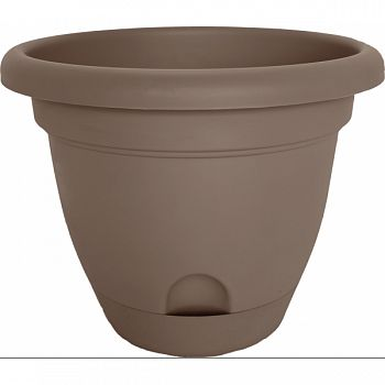 Lucca Planter CURRATED 8 INCH (Case of 12)