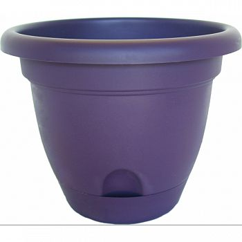 Lucca Planter EXOTICA 10 INCH (Case of 6)