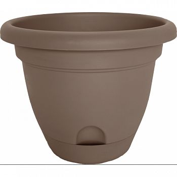 Lucca Planter CURATED 10 INCH (Case of 6)
