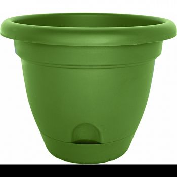 Lucca Planter LIVING GREEN 12 INCH (Case of 6)