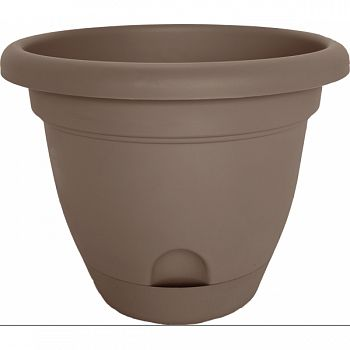 Lucca Planter CURATED 12 INCH (Case of 6)