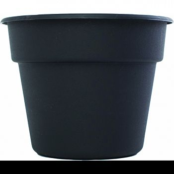 Bloem Dura Cotta Hanging Basket BLACK 12 INCH (Case of 12)