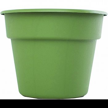 Bloem Dura Cotta Hanging Basket LIVING GREEN 12 INCH (Case of 12)