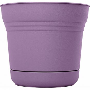Bloem Saturn Planter PLUMMED 7 INCH (Case of 12)