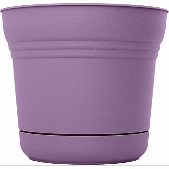 Bloem Saturn Planter PLUMMED 10 INCH (Case of 6)