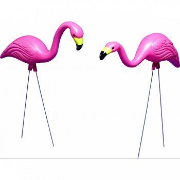 Bloem Pink Flamingos PINK 2 PACK (Case of 6)