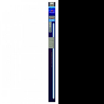 Coralife Actinic T5 Ho Fluorescent Lamp  36IN/39 WATT