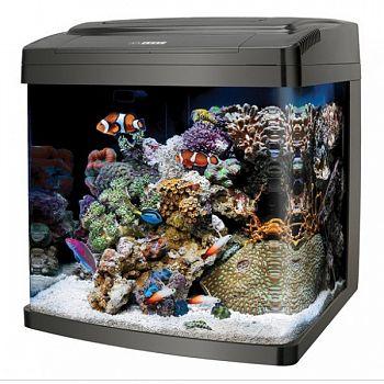 Coralife Biocube 14 gallon