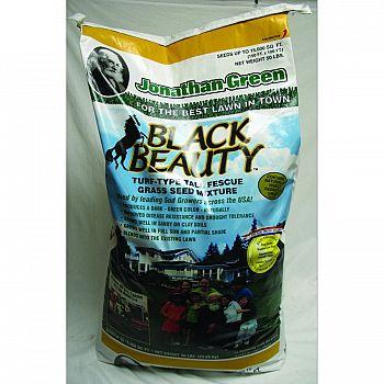 Black Beauty - 15000 SQ FT