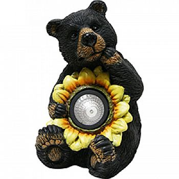 Black Bear With Solar Sunflower