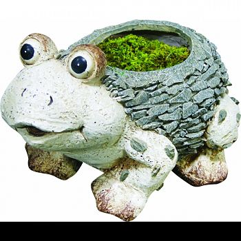 Frog Planter GRAY/WHITE 15X12X13 INCH