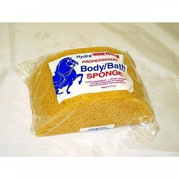 Body Sponge