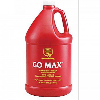 Go-Max Equine Liquid Supplement - Gallon