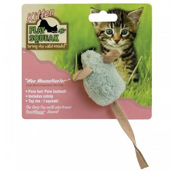 Play-N-Squeak Wee Mouse Hunter Cat Toy