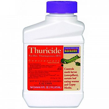 Bacillus Thuringiensis Concentrate for Caterpillar Control Pint