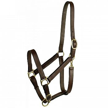 Leather Turnout Halter w/Snap