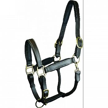 Gatsby Padded Leather Turnout Halter Horse