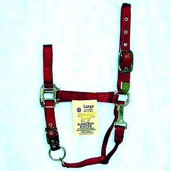 Nylon Average Horse Halter w/ Chin Strap 1 in.