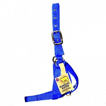Turnout Cow Halter - Blue - 1 in.