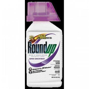 Roundup Super Conc (Case of 6)