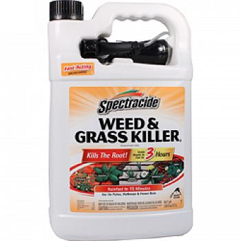 Spectracide Weed And Grass Killer (Case of 4)