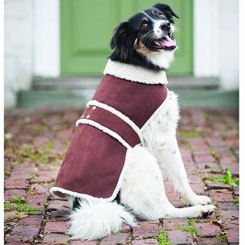Shearling Dog Coat