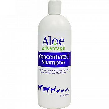 Aloe Concentrate Shampoo 10x Qt