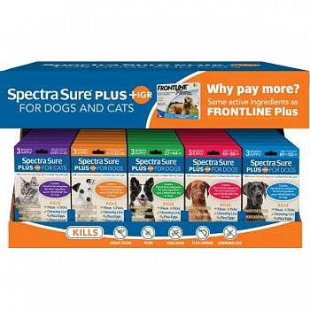 Spectra Sure + Igr Counter Display ASSORTED 30 PC
