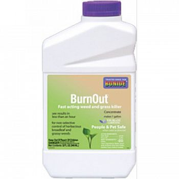 Burnout Weed And Grass Killer Concentrate