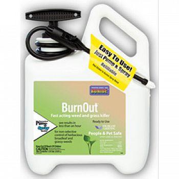 Burnout Weed And Grass Killer Rtu Pump N Spray