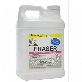 Eraser (Case of 2)