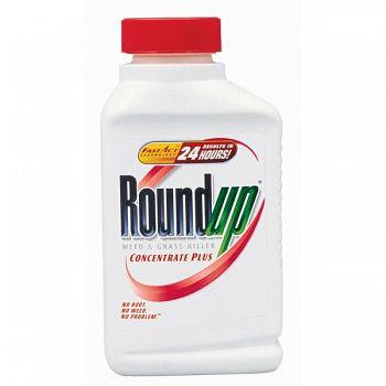 Round Up (Case of 12)