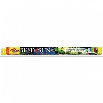 Reef 50/50