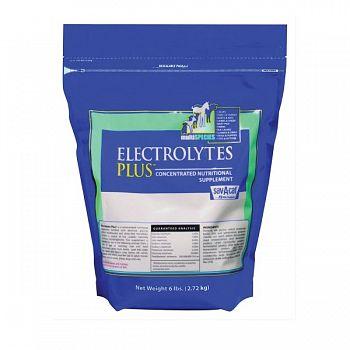 Electrolytes Plus Bag