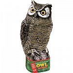 This earth friendly owl will scare away a variety of pests and pigeons from your garden. Owl is made to last for years and is lightweight. May also be used in a garden or patio area as an ornament. Display on a pole or hang in a tree.