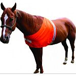 Fits horses 600 to 1000 pounds Keep your horse visible to others and you 3m reflective strip provides low light visibility Exclusive front closure for easy wearability Made in the usa