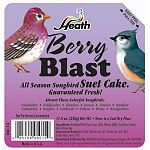 The Heath Berry Blast Suet Mix offers a quick source of high energy for your backyard birds, which have a very high metabolism. Suet is an excellent substitute for insects