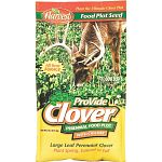 ProVide Forage Clover & Chicory is a premium mixture of forage clover and forage chicory developed to provide a top quality food plot year round for both Deer & Turkey.